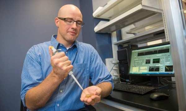 Nanotecnología para diagnosticar y evaluar progreso de artrosis